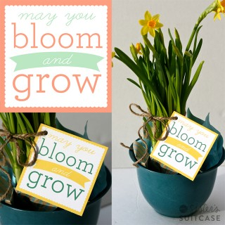 "Printable ""Bloom and Grow"" Spring Gift Tags + Blog Hop"