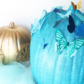 butterfly pumpkin_golden carriage