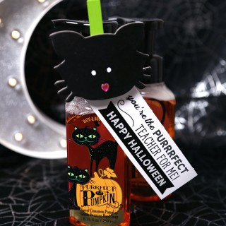 purrfect-teacher-gift